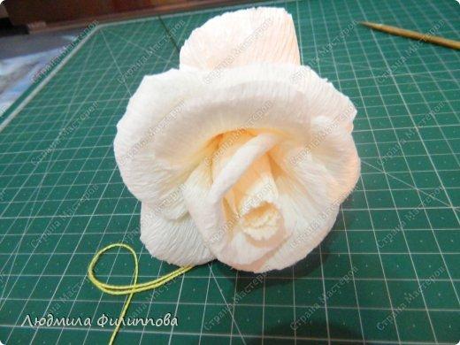 Добрый день дорогие мастерицы! Хочу поделиться с Вами своим способом изготовления роз из гофрированной бумаги. Америку я не открыла, в Стране много подобных МК, но у каждого, в том числе и у меня, своя технология. Может кому-нибудь пригодится мой МК. фото 33