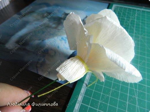 Добрый день дорогие мастерицы! Хочу поделиться с Вами своим способом изготовления роз из гофрированной бумаги. Америку я не открыла, в Стране много подобных МК, но у каждого, в том числе и у меня,  своя технология. Может кому-нибудь пригодится мой МК. фото 34