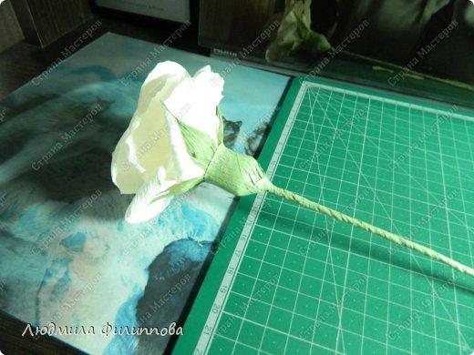 Добрый день дорогие мастерицы! Хочу поделиться с Вами своим способом изготовления роз из гофрированной бумаги. Америку я не открыла, в Стране много подобных МК, но у каждого, в том числе и у меня, своя технология. Может кому-нибудь пригодится мой МК. фото 47