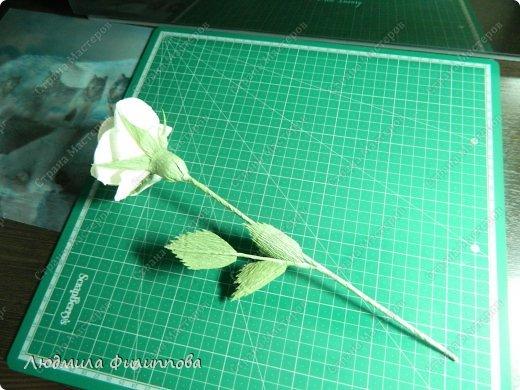 Добрый день дорогие мастерицы! Хочу поделиться с Вами своим способом изготовления роз из гофрированной бумаги. Америку я не открыла, в Стране много подобных МК, но у каждого, в том числе и у меня, своя технология. Может кому-нибудь пригодится мой МК. фото 51