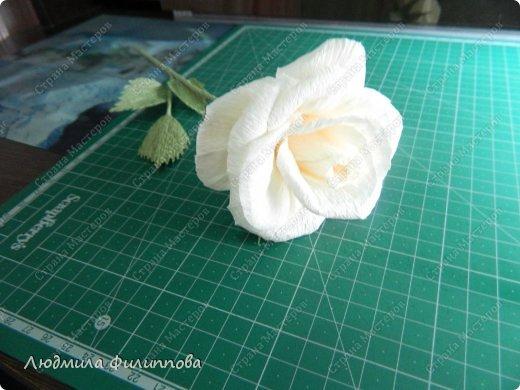Добрый день дорогие мастерицы! Хочу поделиться с Вами своим способом изготовления роз из гофрированной бумаги. Америку я не открыла, в Стране много подобных МК, но у каждого, в том числе и у меня,  своя технология. Может кому-нибудь пригодится мой МК. фото 52
