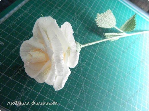 Добрый день дорогие мастерицы! Хочу поделиться с Вами своим способом изготовления роз из гофрированной бумаги. Америку я не открыла, в Стране много подобных МК, но у каждого, в том числе и у меня, своя технология. Может кому-нибудь пригодится мой МК. фото 53
