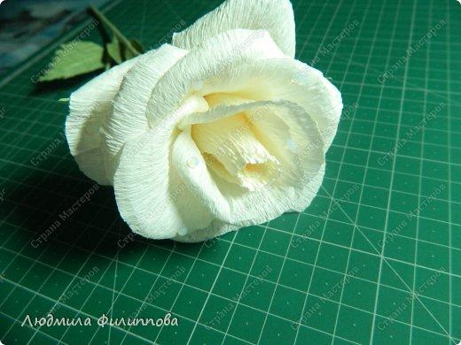 Добрый день дорогие мастерицы! Хочу поделиться с Вами своим способом изготовления роз из гофрированной бумаги. Америку я не открыла, в Стране много подобных МК, но у каждого, в том числе и у меня, своя технология. Может кому-нибудь пригодится мой МК. фото 55