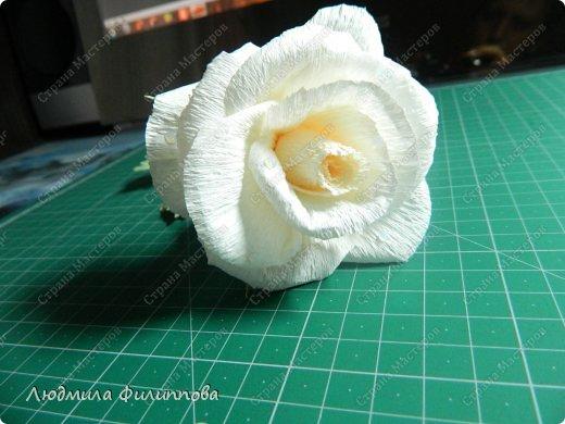 Добрый день дорогие мастерицы! Хочу поделиться с Вами своим способом изготовления роз из гофрированной бумаги. Америку я не открыла, в Стране много подобных МК, но у каждого, в том числе и у меня, своя технология. Может кому-нибудь пригодится мой МК. фото 56