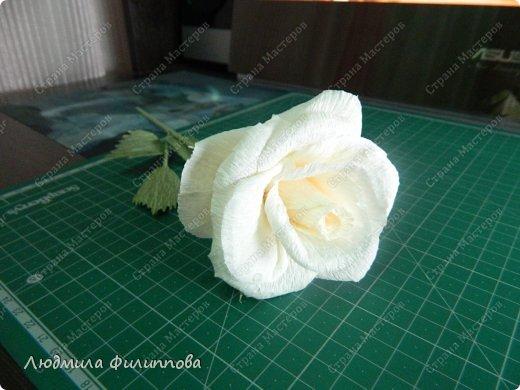 Добрый день дорогие мастерицы! Хочу поделиться с Вами своим способом изготовления роз из гофрированной бумаги. Америку я не открыла, в Стране много подобных МК, но у каждого, в том числе и у меня, своя технология. Может кому-нибудь пригодится мой МК. фото 57