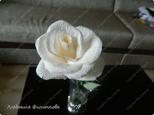 Добрый день дорогие мастерицы! Хочу поделиться с Вами своим способом изготовления роз из гофрированной бумаги. Америку я не открыла, в Стране много подобных МК, но у каждого, в том числе и у меня,  своя технология. Может кому-нибудь пригодится мой МК. фото 61