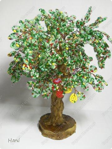 дерево - карамелька фото 1