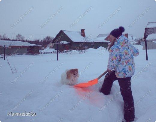 Чистим с Чипкой снег( Ну кто чистит, а кто играет)) фото 2