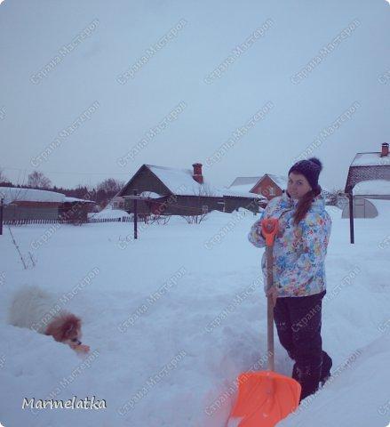 Чистим с Чипкой снег( Ну кто чистит, а кто играет)) фото 1