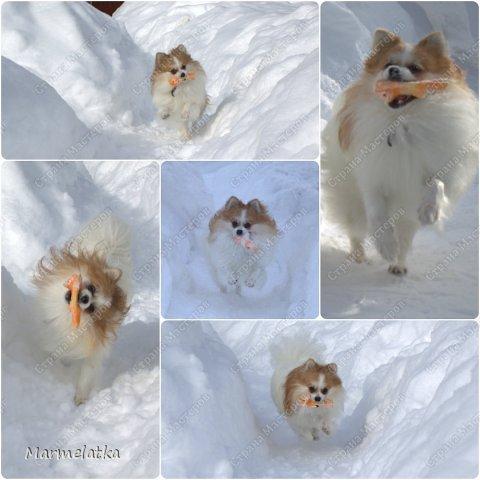 Чистим с Чипкой снег( Ну кто чистит, а кто играет)) фото 7