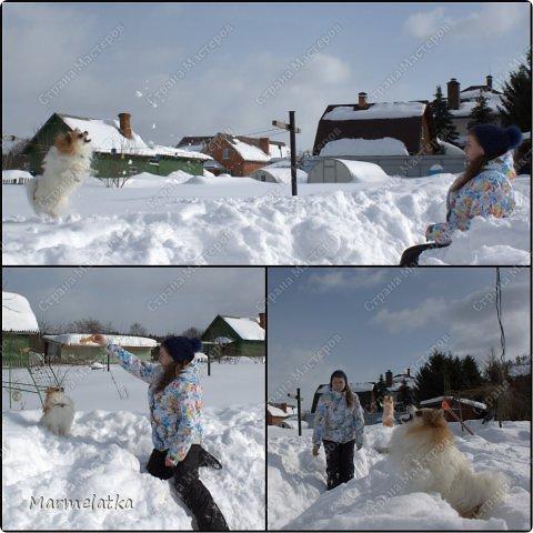 Чистим с Чипкой снег( Ну кто чистит, а кто играет)) фото 4