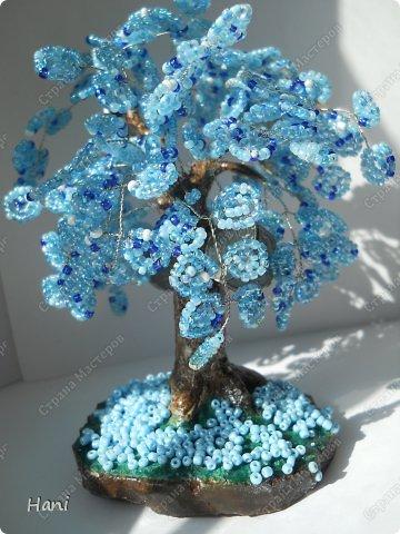 дерево - карамелька фото 4