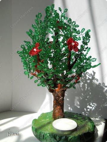 дерево - карамелька фото 6