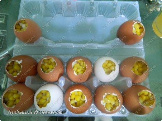 Добрый день дорогие Мастерицы. В преддверии праздника Светлой Пасхи хочу поделиться с Вами рецептом очень вкусных и красивых яичек. Может кого-то из Вас заинтересует и Вы захотите приготовить такое блюдо себе на праздничный стол. Я буду этому очень рада.  фото 12