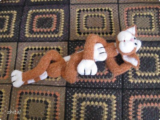Вот мы!!! Познакомьтесь!  Кот Васька , гуляющий сам по себе, очень тощий и своенравный ,был перевоспитан во время вязания на Он-Лайн Мастер-Классе Натальи Ивановой.  Теперь он мечтает о подружке и маленьких котятках. фото 4
