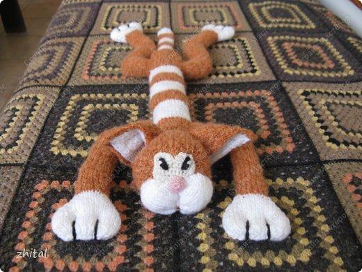 Вот мы!!! Познакомьтесь!  Кот Васька , гуляющий сам по себе, очень тощий и своенравный ,был перевоспитан во время вязания на Он-Лайн Мастер-Классе Натальи Ивановой.  Теперь он мечтает о подружке и маленьких котятках. фото 5