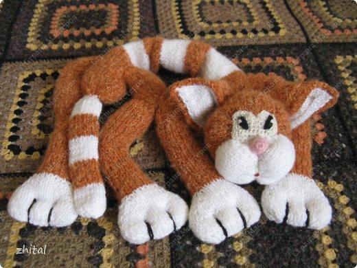 Вот мы!!! Познакомьтесь!  Кот Васька , гуляющий сам по себе, очень тощий и своенравный ,был перевоспитан во время вязания на Он-Лайн Мастер-Классе Натальи Ивановой.  Теперь он мечтает о подружке и маленьких котятках. фото 6