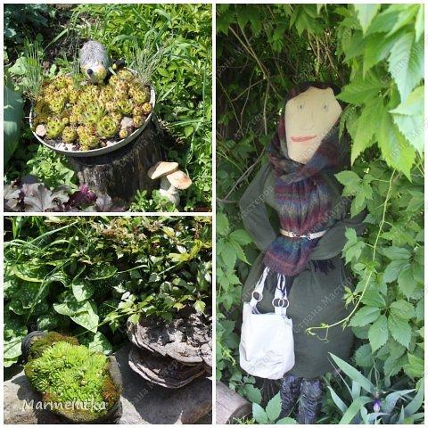 Наш сад-огород)) фото 2
