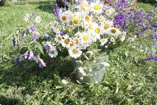 Добрый день всем!!!! Хочу с Вами поделиться прекрасными мгновениями счастья. Прогулками по полям и земляничным полянам.  Полевые цветы... Полевые... Васильки и ромашки в лугах... Ярко-синие и голубые – На бескрайних Российских полях.  Сколько нежности, яркости, света Вы храните в себе летним днем... Теплым солнцем весной вы согреты, И умыты осенним дождем...  Разукрашены радуги краской, Снежной шубой, укрыты зимой. Мать – Земля напоила вас лаской, Наградила небесной красой.  Полевые цветы... Полевые... Не сравнить вас с садовым цветком. Вы согрели мне душу, родные! Поселились вы в сердце моем! фото 14