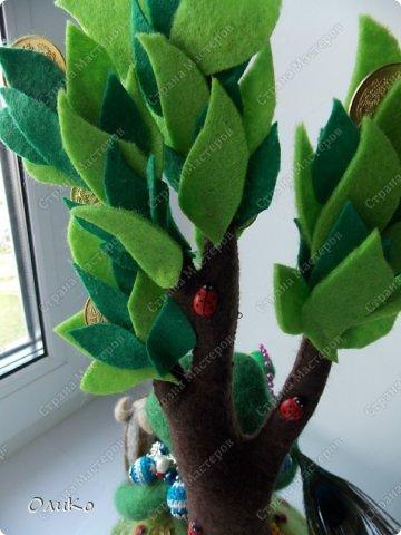 Поделка изделие Валяние фильцевание Денежное дерево Фетр Шерсть фото 12