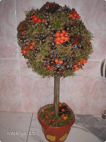 Осенний топиарий в садик