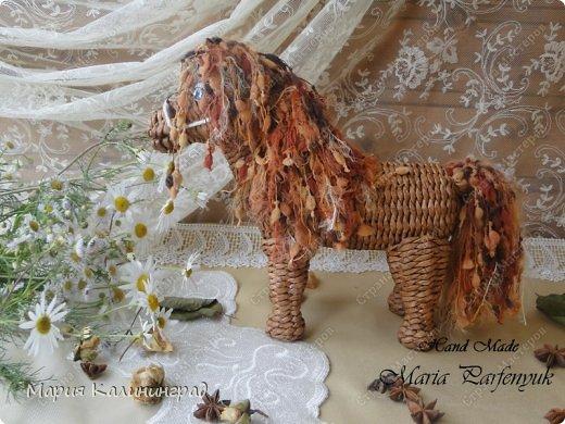 Мастер-класс Новый год Плетение Мк плетёной лошадки Бумага газетная Трубочки бумажные фото 48