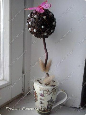 Материалы: кофе,бусинки,бабочка, сухоцветы. фото 1
