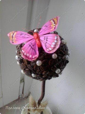 Материалы: кофе,бусинки,бабочка, сухоцветы. фото 2