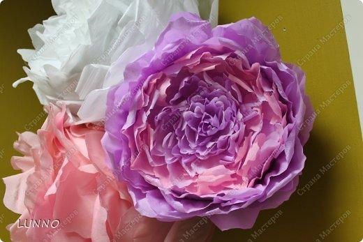 Продолжаю рассказывать вам о создании больших цветов! На этот раз это были пионы :) фото 13