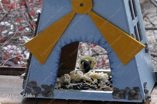 Всех приветствую, кто зашёл полюбоваться нашей работой! Мы старались всей семьёй. Наш папа выпелил из фанеры и собрал конструкцию мельницы. Сын её загрунтовал, а я сделала окончательный декор - покраска, лесенка,камушки. фото 4