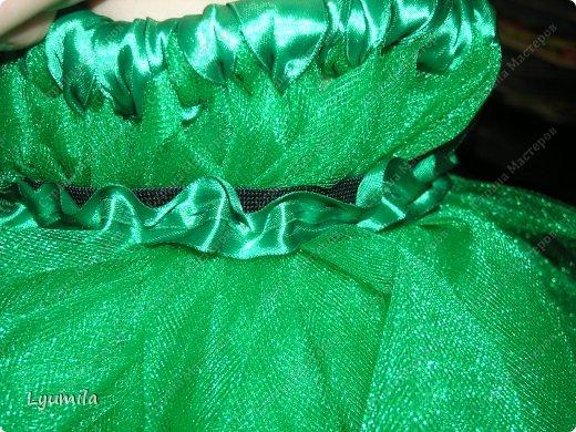 Добрый день! Сегодня у Лидочки в клубе Дед Мороз поздравлял детей и был праздник. Я сделала для неё (Лидочка помогала) костюм лягушки, который состоит из платья туту, (которое шьётся БЕЗ швейной машинки) и ободка с глазками. Далее фото с праздника фото 7