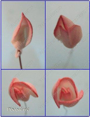 Уникальный материал - фоамиран! Именно из него у меня стали получаться розы. Спешу поделиться своей радостью с вами. Материал новый, МК немного. Еще один МК (от неумехи) не помешает? фото 19