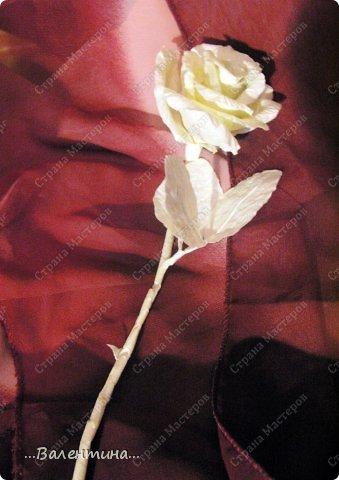 Мастер-класс Материалы и инструменты Поделка изделие Моделирование конструирование Совмещаем несовместимое Роза и малярный скотч  Скотч фото 1