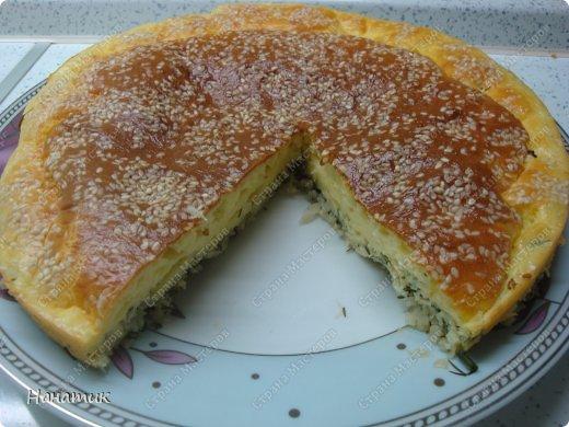 Кулинария Мастер-класс Рецепт кулинарный Капустный пирог ну очень быстро Продукты пищевые фото 11
