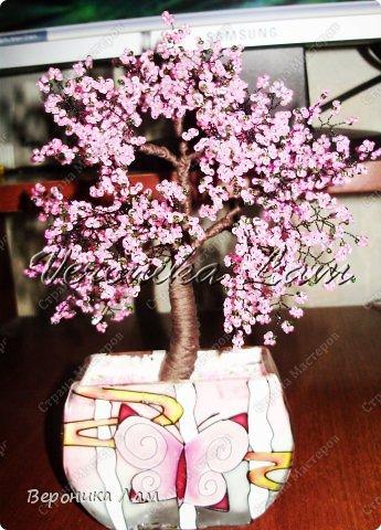 Насмотрелась я в инете на деревья из бисера, вот и захотелось себе такое же))) Решила начать с классики и сплела японскую сакуру: фото 2