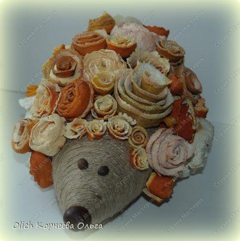 Мастер-класс Поделка изделие Моделирование конструирование Ежик в апельсиновых розах Бумага газетная Клей Кофе Материал природный Продукты пищевые Шпагат фото 2