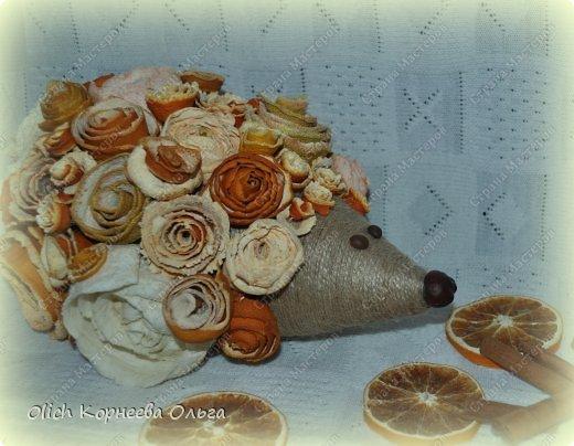 Мастер-класс Поделка изделие Моделирование конструирование Ежик в апельсиновых розах Бумага газетная Клей Кофе Материал природный Продукты пищевые Шпагат фото 3