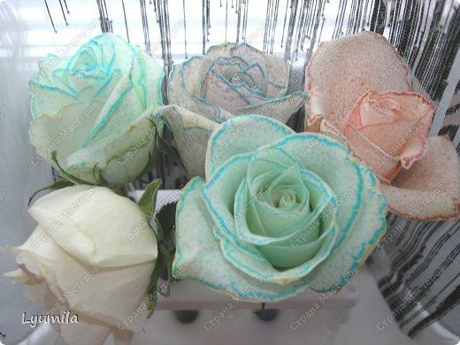 После 8 марта осталось много цветов в разной степени увядания. Разбирали букеты и на остатках цветов ставили с Лидочкой опыты. Я вспомнила, что живые цветы можно красить и мы посвятили последние 2 недели этому. На этом фото подкрашенные розы.  фото 13