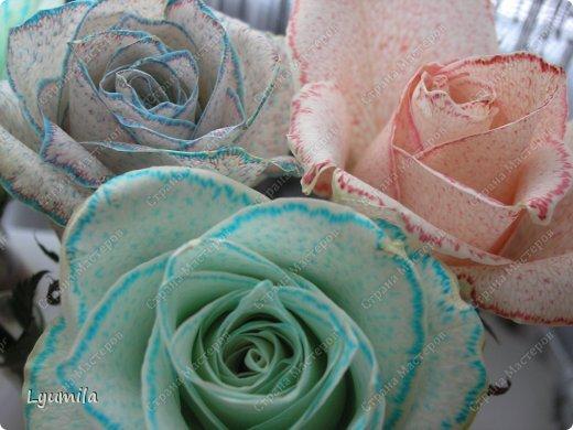 После 8 марта осталось много цветов в разной степени увядания. Разбирали букеты и на остатках цветов ставили с Лидочкой опыты. Я вспомнила, что живые цветы можно красить и мы посвятили последние 2 недели этому. На этом фото подкрашенные розы.  фото 1