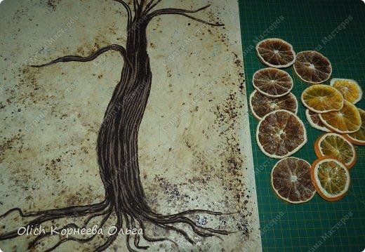 Картина панно рисунок Мастер-класс Моделирование конструирование Панно Апельсиновое дерево  Клей Кофе Краска Продукты пищевые Пряжа фото 10