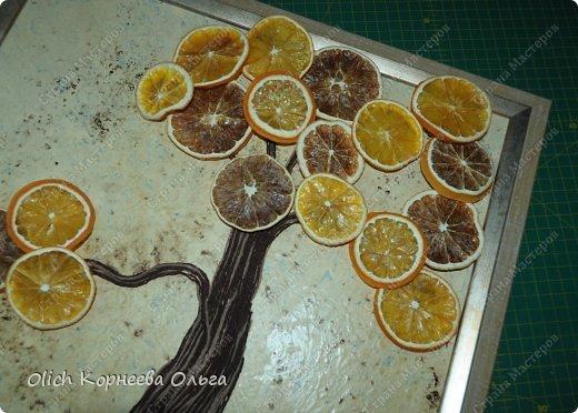 Картина панно рисунок Мастер-класс Моделирование конструирование Панно Апельсиновое дерево  Клей Кофе Краска Продукты пищевые Пряжа фото 11