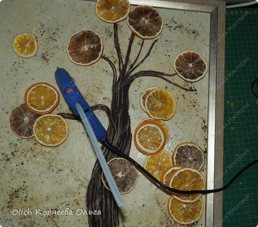Картина панно рисунок Мастер-класс Моделирование конструирование Панно Апельсиновое дерево  Клей Кофе Краска Продукты пищевые Пряжа фото 12