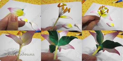 """Всем здравствуйте! Последнее время я что-то """"подсела"""" на фигурные дыроколы, сижу делаю цветочки из бумаги))). Сегодня я Вам расскажу как делаю лилии с помощью своих помощников дыроколов.  фото 10"""