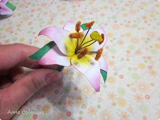 """Всем здравствуйте! Последнее время я что-то """"подсела"""" на фигурные дыроколы, сижу делаю цветочки из бумаги))). Сегодня я Вам расскажу как делаю лилии с помощью своих помощников дыроколов.  фото 11"""