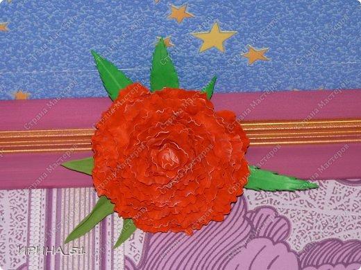 Здравствуйте! Сегодня у меня обзор материала под названием Фоамиран, фоам, фом, пластичная замша, пористая резина... (все это название одного и того же материала). Фоамиран – так называется декоративный материал, поставляемый из Ирана. Мастера, которые применяют его в своем творчестве, используют сокращенный вариант названия - фом. В состав пены, из которой и получается фоамиран, входят этилен и винилацетат. Именно это и обеспечивает наличие уникальных свойств, делающих его просто идеальным материалом для изготовления искусственных цветов. Мягкий, эластичный и практичный фом может быть использован и в детском творчестве, так как абсолютно не токсичен. В искусных руках листочек фома превращается в красивый лепесток, изгиб которого делает его похожим на настоящий. В продажу поступает фоамиран всех цветов и оттенков. Я познакомилась с этим материалом не так давно, но уже сделала для себя  некоторые выводы по качеству и производителям этого материала. Решила поделиться с Вами, думаю начинающим будет полезна эта информация. У меня сейчас 4 разных фоама. Рассмотрим все с примерами на цветах. Итак, приступим.  фото 15