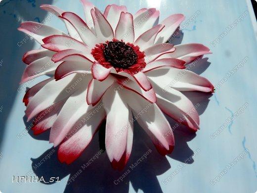 Здравствуйте! Все цветы сделаны из фоама (производитель Турция). фото 4