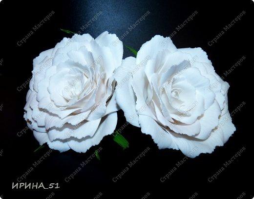 Белые Розы из фоамирана. фото 2