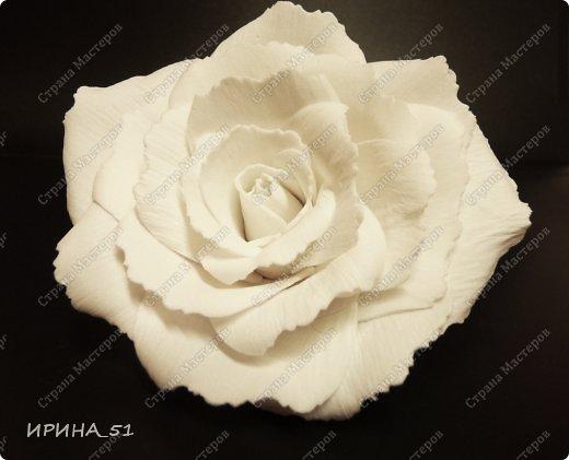 Белые Розы из фоамирана. фото 4