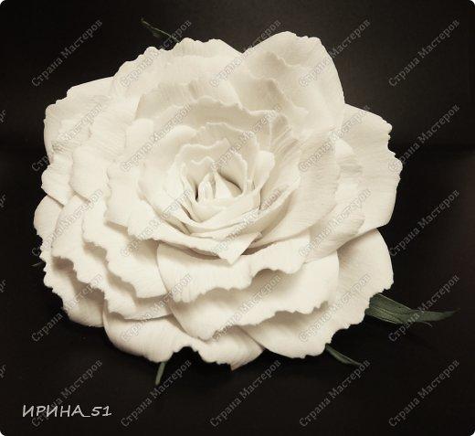 Белые Розы из фоамирана. фото 3
