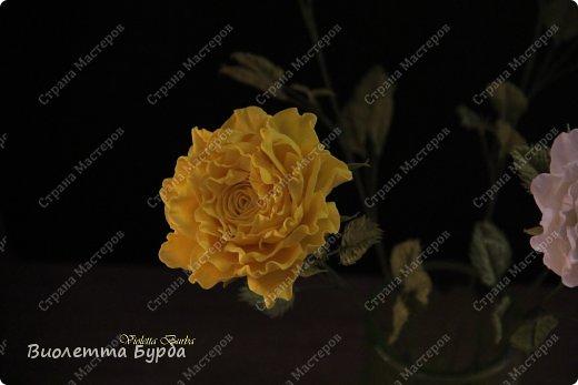 Доброе время суток, уважаемые жители СМ!!! Первый букет из таких же роз, делала в подарок, а это, его повтор. Заказ. Розы, сделаны по МК Светланы Лобович. Светочка, огромное вам спасибо!!! фото 4